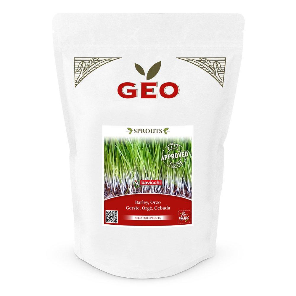 Keimsaaten Gerstengras 600 g