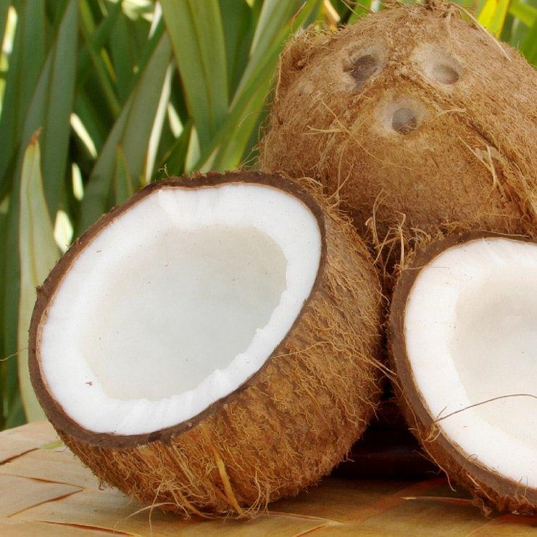 Kokosöl 500 ml