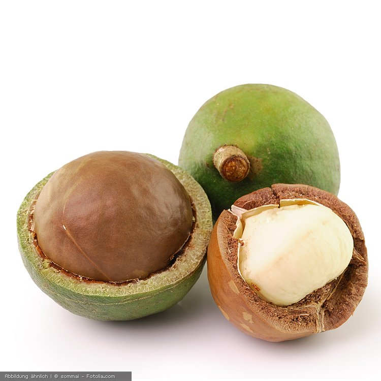 Macadamianüsse, bio 500 g